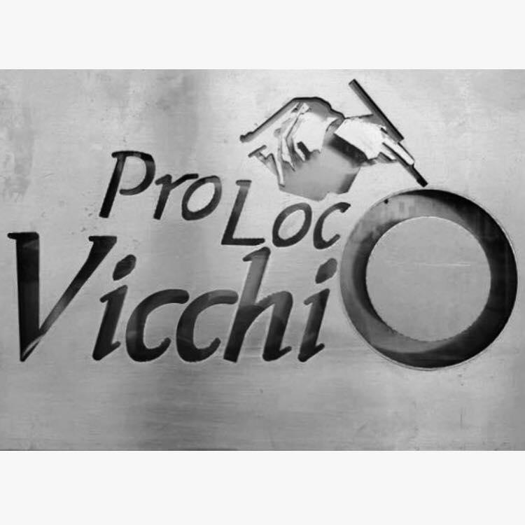 Nuovo consiglio della ProLoco Vicchio 2020.