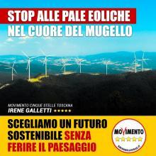 """La candidata alla Regione Galletti del M5S sull'eolico: """"E' una tecnologia vecchia che ferisce un'area turistica di pregio"""""""